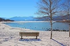 Banco de reclinación al lado del árbol de abedul, vista al tegernsee del lago en winte Imagen de archivo