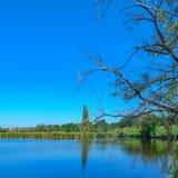 Banco de rio com reflexão das árvores na água, dia ensolarado do verão imagem de stock