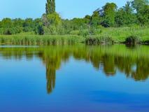 Banco de rio com reflexão das árvores na água, dia ensolarado do verão imagens de stock