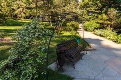 Banco decorativo e un bello arco floreale sul viale del parco all'arboreto di Soci Fotografie Stock Libere da Diritti