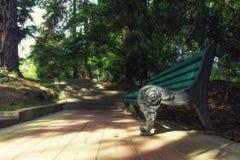 Banco decorativo en la trayectoria del parque en el arboreto de Sochi Imágenes de archivo libres de regalías