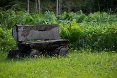 Banco del ceppo nella foresta Fotografie Stock Libere da Diritti