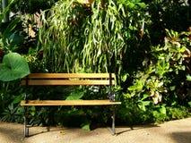 Banco del giardino Immagine Stock