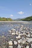 Banco del guijarro de un río de la montaña. Fotos de archivo