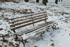 Banco del invierno con nieve Imagen de archivo