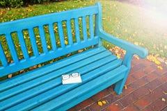 Banco del otoño con los vidrios y los apuroses soleados del libro Imagen de archivo libre de regalías