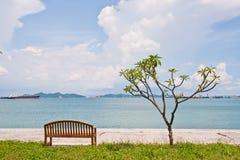 Banco del resto y el árbol en la orilla Fotografía de archivo