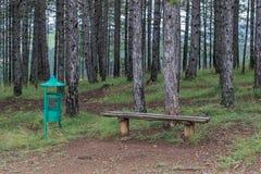 Banco della disposizione dei posti a sedere nella natura ed in una pattumiera Fotografie Stock Libere da Diritti