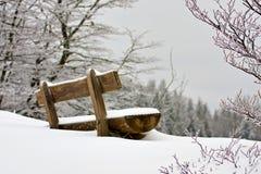 Banco dello Snowy Immagine Stock