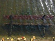 Banco di autunno nell'acqua Fotografie Stock