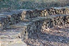 Banco di legno nel parco fotografia stock