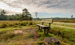 Banco di legno stagionato in una riserva naturale nelle prime ore del mattino Fotografie Stock