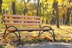 Banco di legno vuoto nel parco autunnale immagine stock libera da diritti