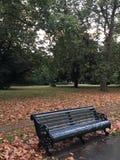 Banco di parco in autunno immagine stock
