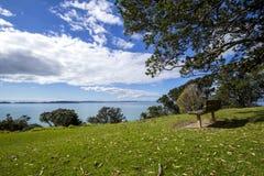 Banco di parco di legno sotto gli alberi che trascurano il mare Immagine Stock
