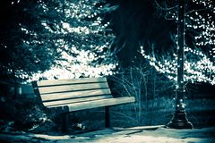Banco di parco nell'inverno Fotografia Stock