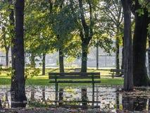 Banco di parco pubblico, in una regolazione rurale circondata di natura fotografie stock