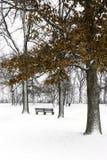 Banco di parco sotto gli alberi innevati con le foglie di autunno arancio sopra Immagine Stock