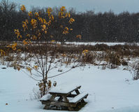 Banco di picnic coperto in neve Fotografia Stock Libera da Diritti