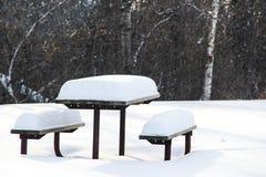 Banco di picnic nell'inverno immagini stock libere da diritti