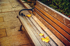 Banco di sosta in autunno immagini stock