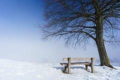 Banco, dia de inverno nevoento imagem de stock