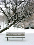 Banco do inverno Imagens de Stock Royalty Free