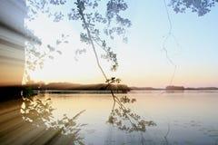 Banco do lago Imagem de Stock
