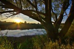 Banco do lago na luz solar da tarde Foto de Stock