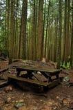 Banco do piquenique na floresta Fotos de Stock Royalty Free