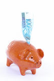 Banco do porco Foto de Stock