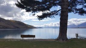 Banco e árvore sós pelo lado do lago imagens de stock