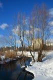 Banco e árvores de rio nevado no fundo da skyline da cidade, do céu azul e das nuvens na manhã do inverno Fotos de Stock Royalty Free