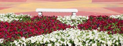 Banco e fiori del giardino Fotografia Stock Libera da Diritti