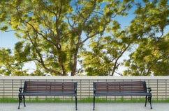 Banco e grande albero Fotografia Stock