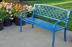 Banco e tulipas azuis fotos de stock