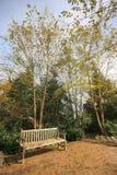 Banco ed alberi in un parco fotografia stock