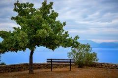 banco ed oceano dell'albero Fotografia Stock Libera da Diritti