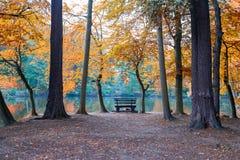 Banco em uma natureza do outono fotografia de stock