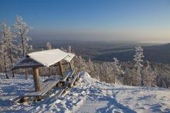 Banco en el bosque del invierno Imágenes de archivo libres de regalías