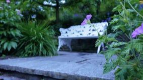 Banco en el jardín para la relajación Fotos de archivo libres de regalías