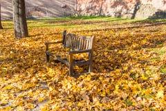 Banco en el medio del parque cubierto por las hojas caidas coloridas con la pared de ladrillos en el fondo fotografía de archivo libre de regalías