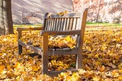 Banco en el medio del parque cubierto por las hojas caidas coloridas con la pared de ladrillos en el fondo imágenes de archivo libres de regalías