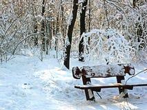 Banco en el parque del invierno Foto de archivo libre de regalías