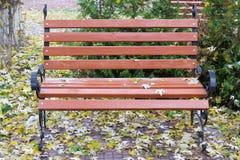 Banco en el parque del otoño Fotos de archivo libres de regalías