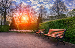 banco en el parque en la puesta del sol Imagen de archivo