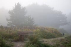 Banco en niebla Foto de archivo