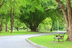 Banco en parque Foto de archivo