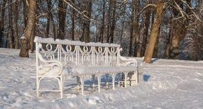 Banco en parque del invierno Fotos de archivo libres de regalías