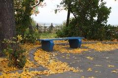 Banco en parque del otoño Foto de archivo